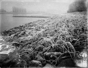 Flussarme / River Arms