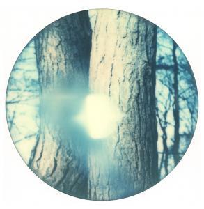 Tree Light 1