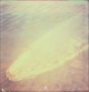 Unter Wasser / Immergee