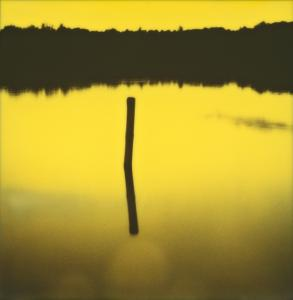 Im gelben See / In the Yellow Lake