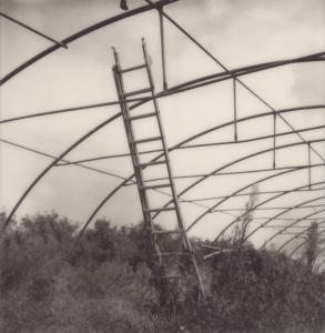 Leiter / Ladder